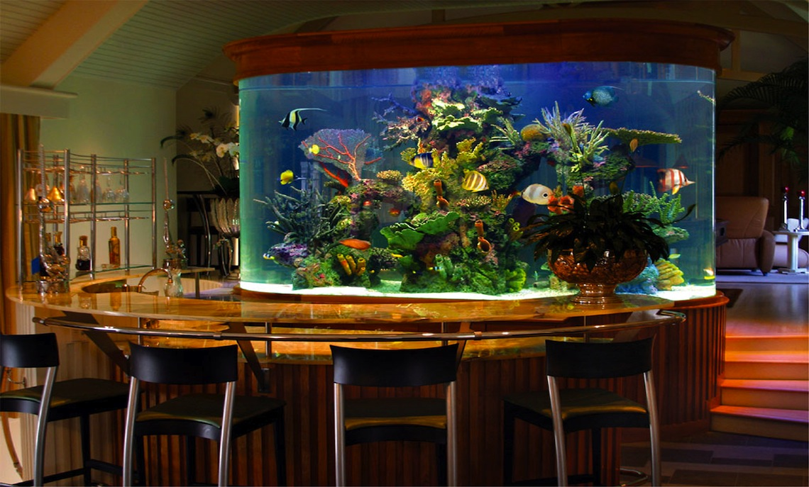 Aquarium store new jersey new jersey aquarium 2017 for Fishing stores nj